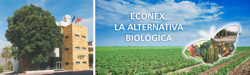 Agricultura ecológica, Agricultura integrada, Agricultura intensiva, Productos almacenados, Silvicultura, Sanidad ambiental